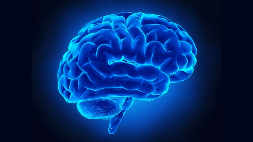 I poteri nascoti del nostro cervello