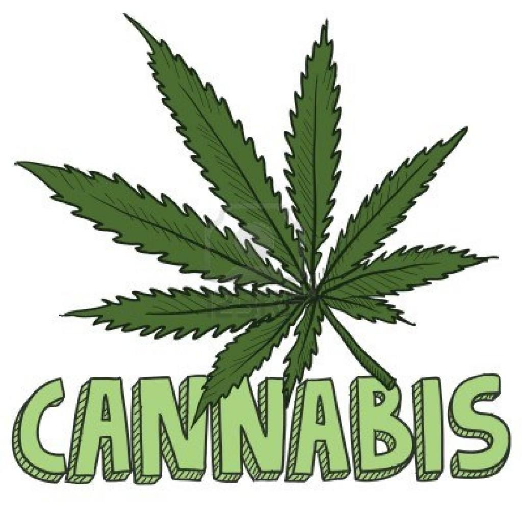 Apre il primo negozio interamente dedicato alla cannabis