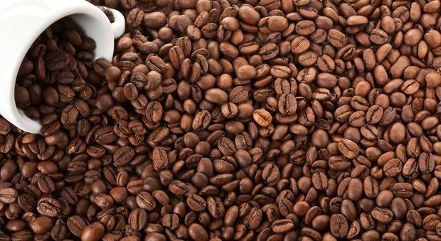 Tutti i benefici del caffè, ne bastano 3 al giorno