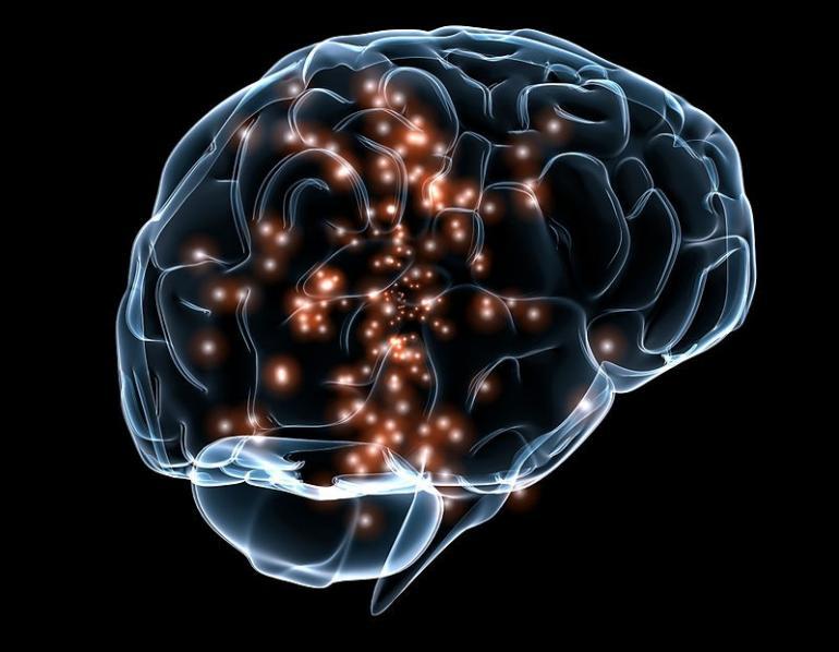 Fa venire il cancro al cervello, la scoperta choc dei ricercatori del Mit