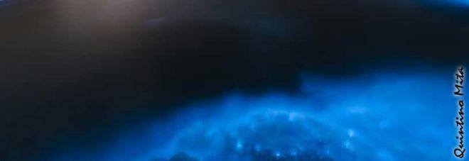 Lo spettacolo del mare scintillante in Salento, ecco da cosa dipende.