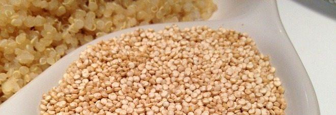 Quinoa, ottima per i ciliaci, combatte il colesterolo e fa bene alla digestione