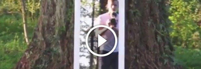 Il ragazzo passa attraverso lo specchio, illusione ottica o magia?
