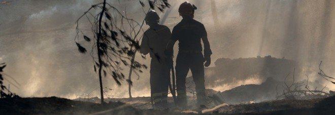 Vesuvio, incendi e orrore, animali vivi per estendere le fiamme