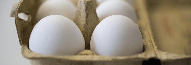 Attenzione! Uova contaminate, tra i paesi a rischio anche l'Italia.