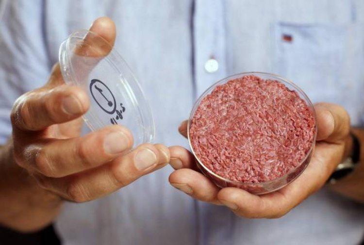 La carne sintetica presto nei nostri piatti, addio ad allevamenti e macellazione di animali