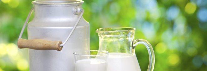 """Latte, allerta per """"latti di crescita"""", è potenzialmente cancerogeno"""