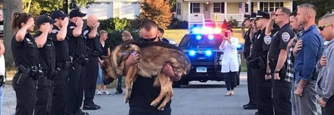 L'ultimo saluto al cane poliziotto malato di cancro, hanno pianto tutti