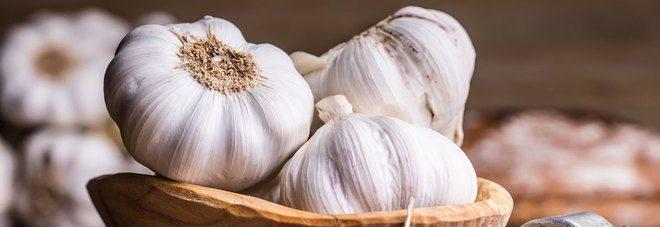 L'aglio blocca il cancro, gli scienziati hanno scoperto come.
