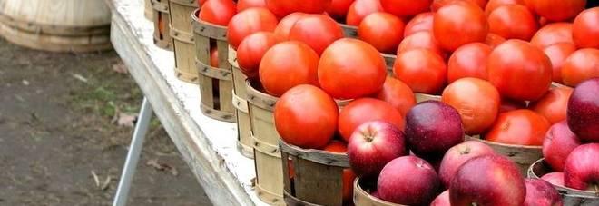 Tre mele al giorno e due pomodori al giorno, mettono in salvo il polmoni dei fumatori.