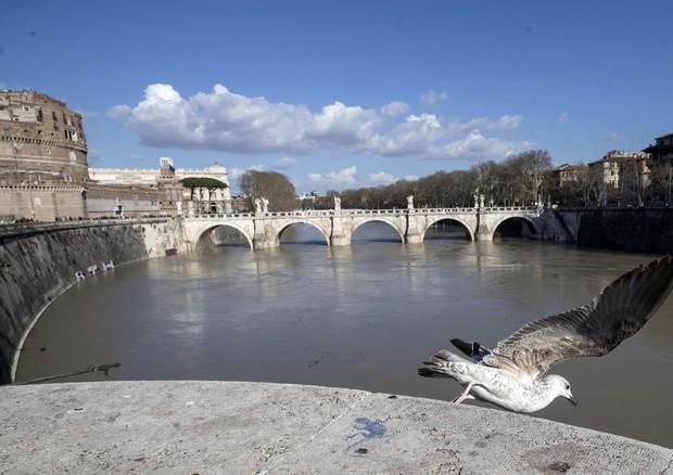 I fiumi di tutto il mondo sono inquinati da farmaci di tutti i tipi.