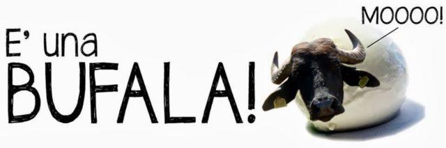 Come capire se si tratta di una bufala, bufalona o fake news