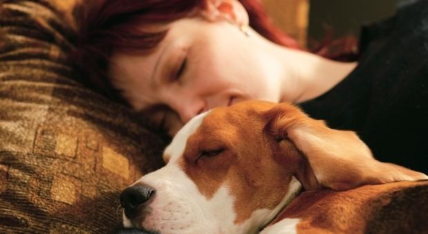Le donne per dormire bene preferiscono il cane al partner.