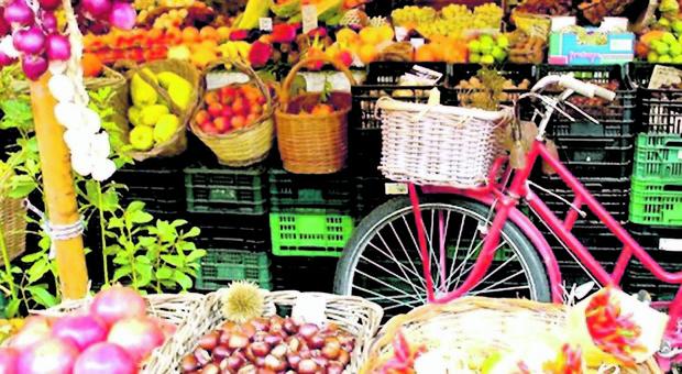 Mangiare molta frutta e verdura diminuisce il rischio di Alzheimer.