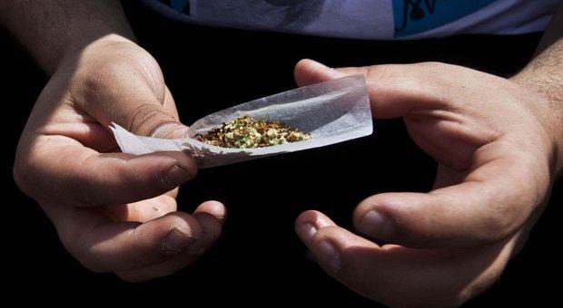 Cannabis, anche un solo spinello modifica la mente degli adolescenti.