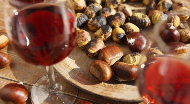 Un bicchiere di vino al giorno, protegge il cuore