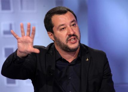 Matteo Salvini vorrebbe chiudere i canapa shop, campagna elettorale, Guardate!