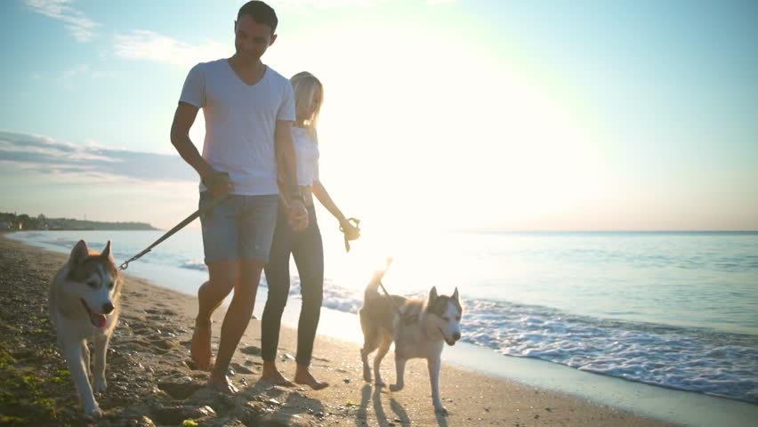 I cani fanno bene al cuore, allungano la vita, ecco il loro segreto.