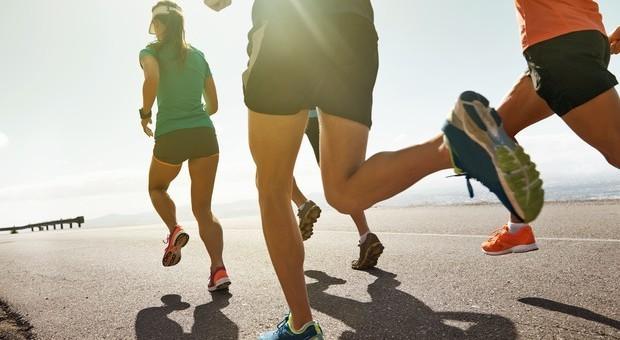 L'attività fisica non fa sempre bene: «Grandi sforzi sul lavoro dannosi per il cuore» .Leggo.-it