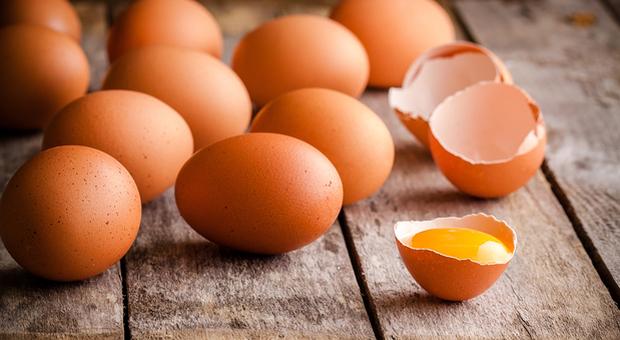 I gusci delle uova fanno bene: aiutano le ossa, i capelli e le unghie a rimanere sani-LEGGO ➥