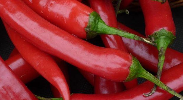 Peperoncino salvavita: dimezza il rischio di infarto e ictus-LEGGO ➥