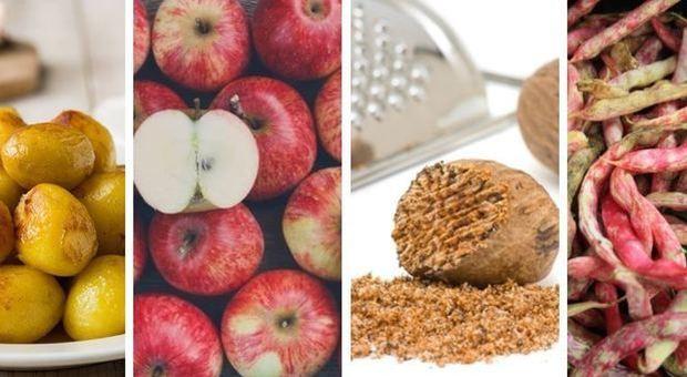 Cibi tossici che mangiamo ogni giorno: attenti a non esagerare, dalle patate ai fagioli-LEGGO ➥