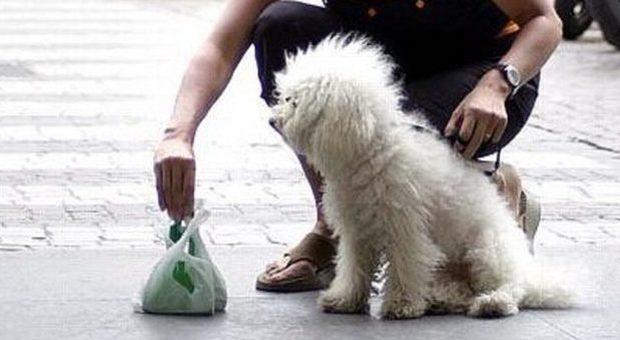 Non raccoglie i bisogni del suo cane: multa di 400 euro-Il messaggero➥