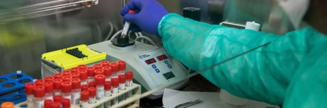 Coronavirus, immunità naturale nel sangue contro il Covid19, parla la virologa Elisa Vincenzi-IL Giornale➟